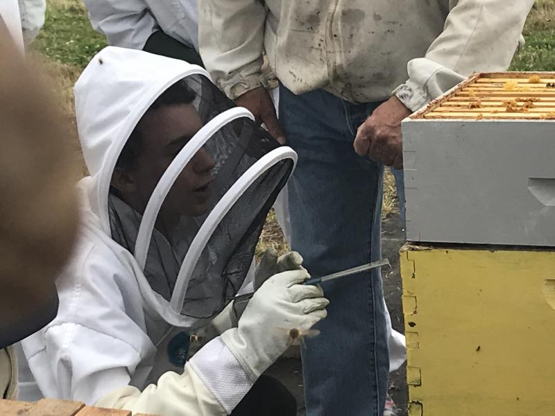 2019 Youth Scholar Damon helps open a hive at an LCBA workshop